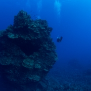 seascape, rapa nui, chile, big coral