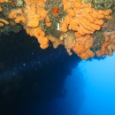 greece, dry suit, winter diving