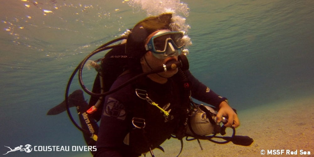 red sea, diver, marsa alam